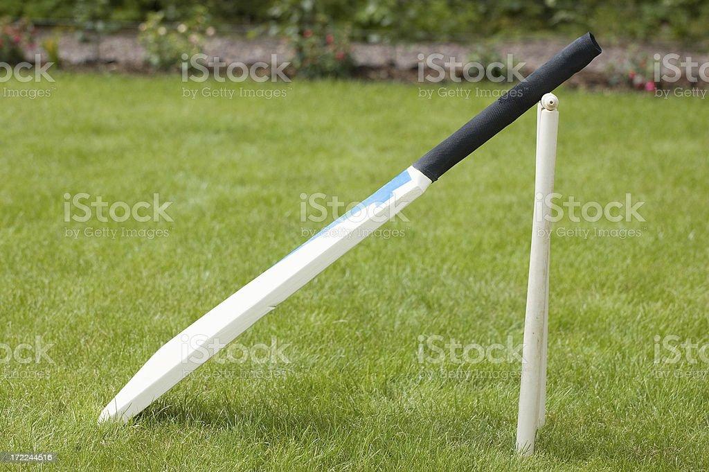 Cricket bat royalty-free stock photo
