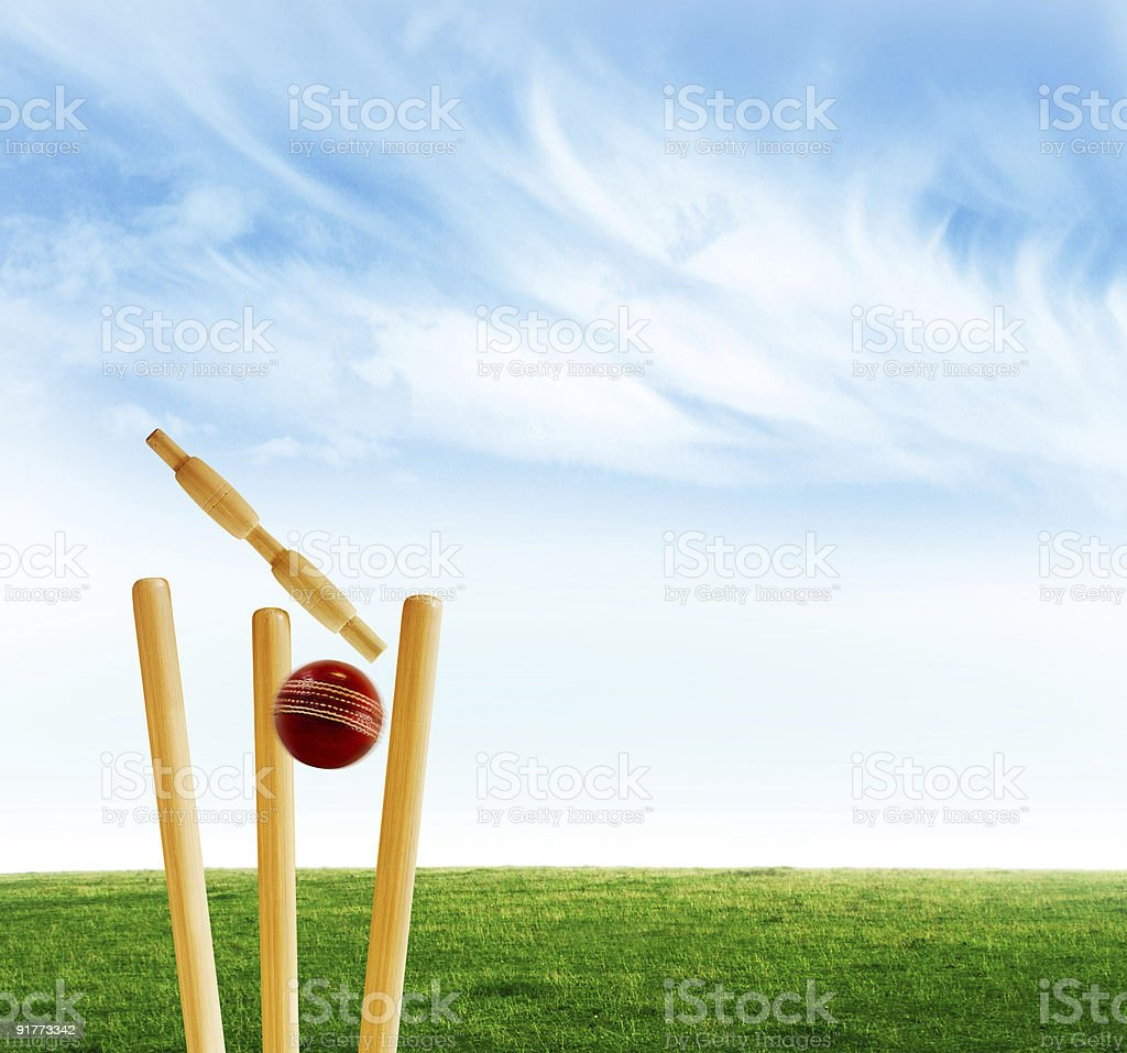 Cricket bats and a ball on a green field stock photo