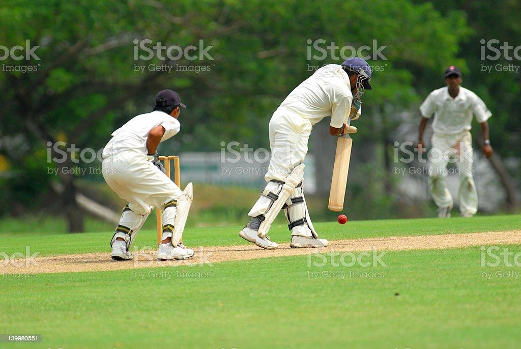 cricket batsman and a catcher stock photo