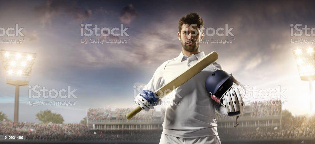 Cricket: Batsman on the stadium stock photo