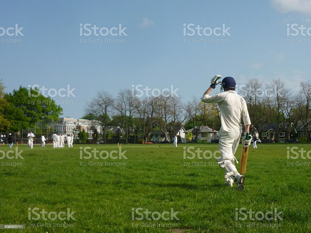 Cricket batsman, shot from behind heading out to bat stock photo