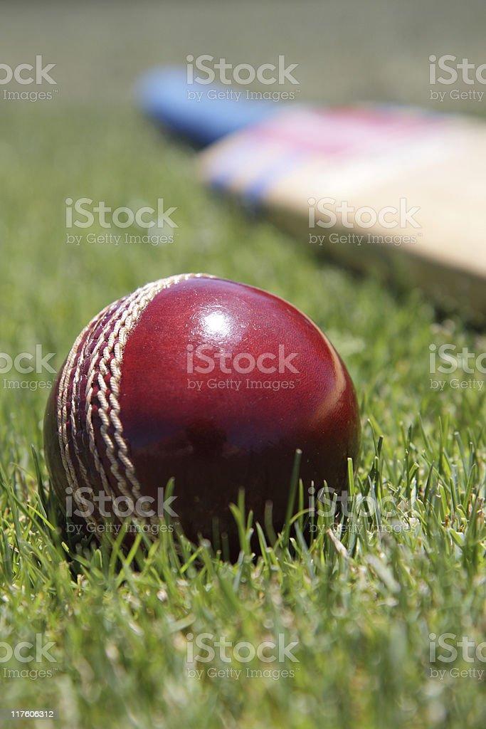 Cricket equipment. stock photo