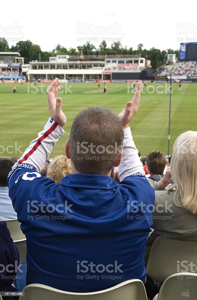 Cricket Fan royalty-free stock photo