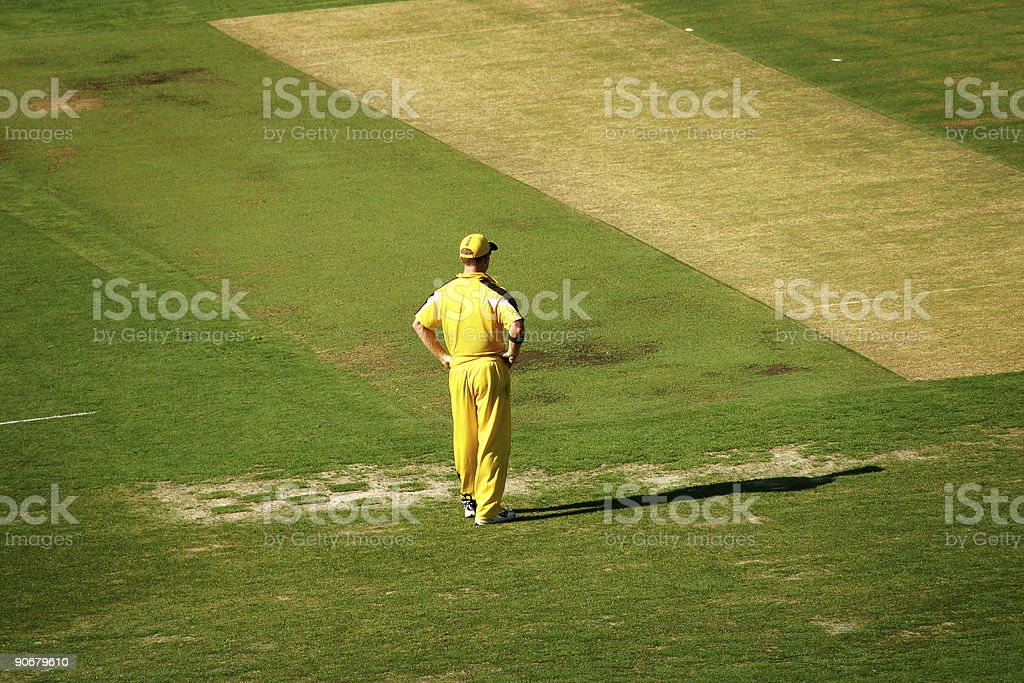 Cricket Fielder royalty-free stock photo