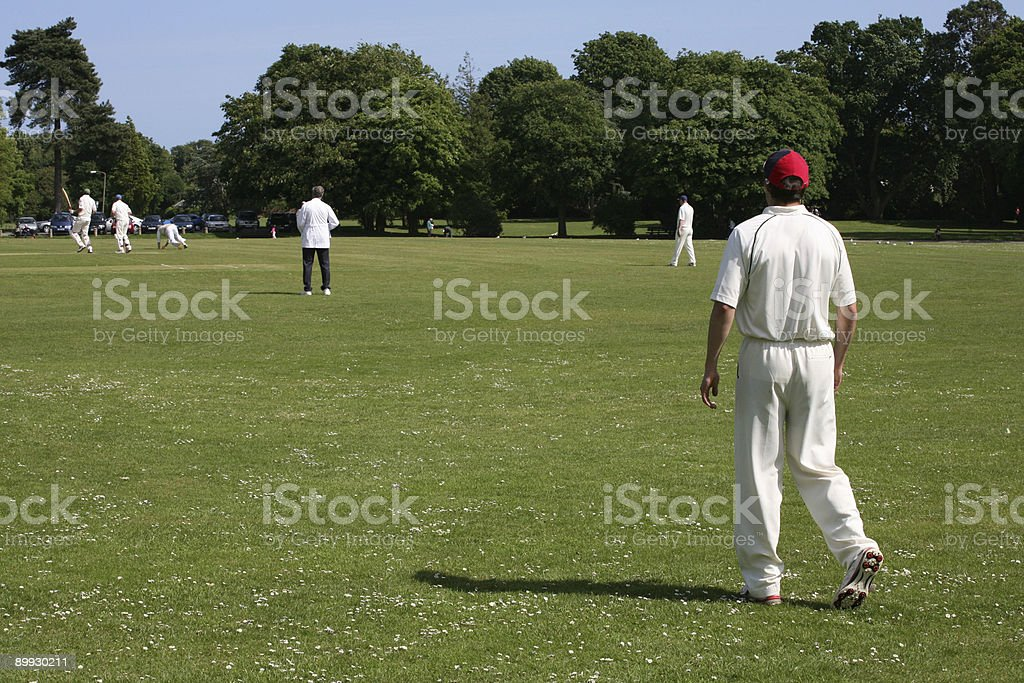 Cricket Game royalty-free stock photo
