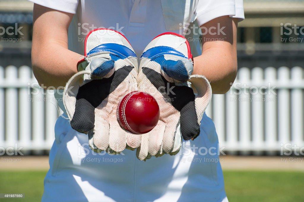 Cricket keeper stock photo