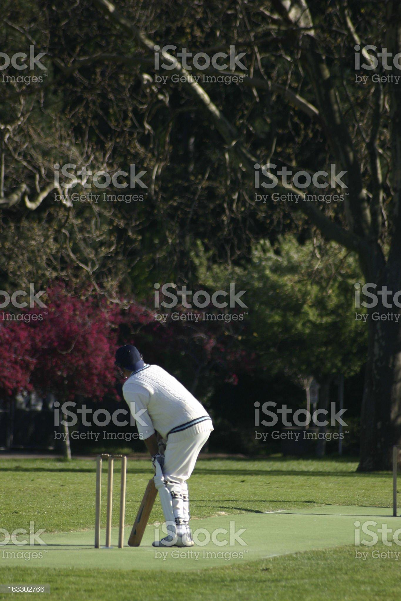 Cricket Match royalty-free stock photo
