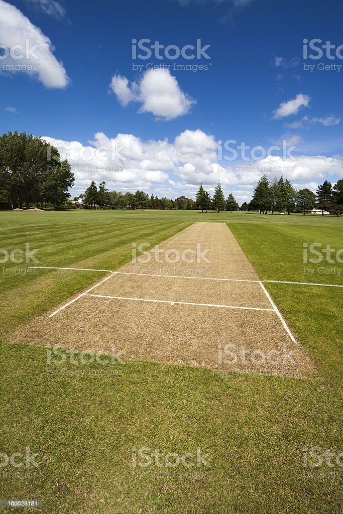 Cricket pitch field royalty-free stock photo