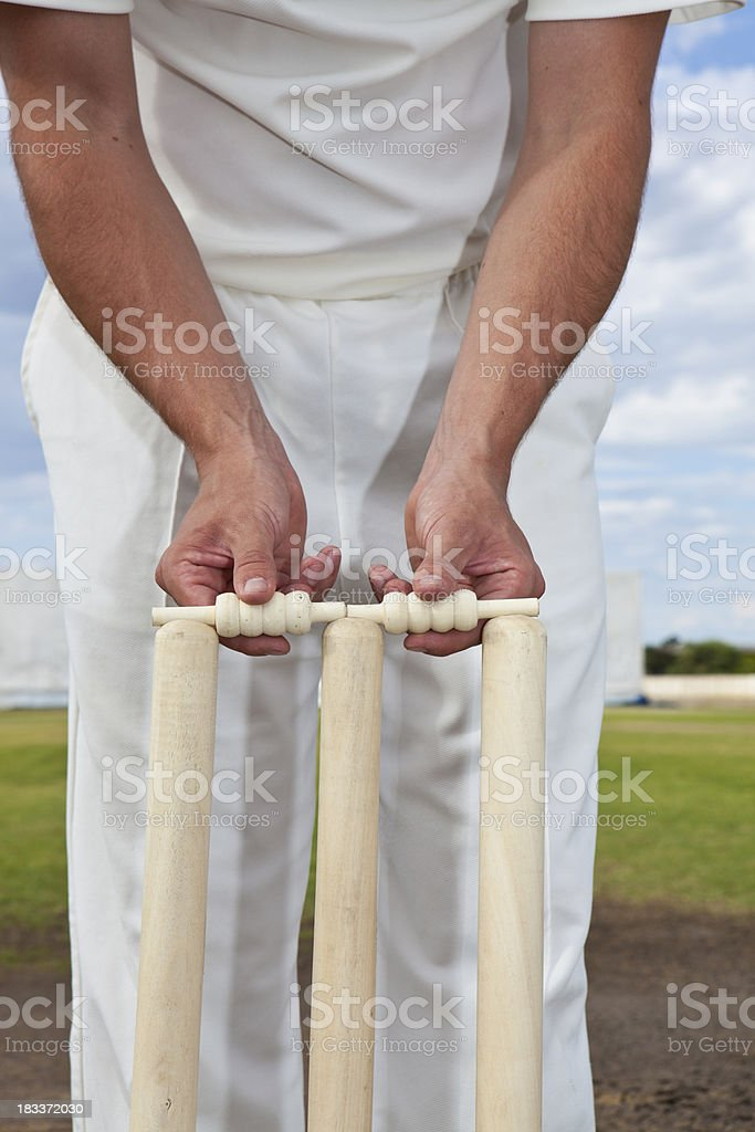 Cricket player setting the stumps stock photo
