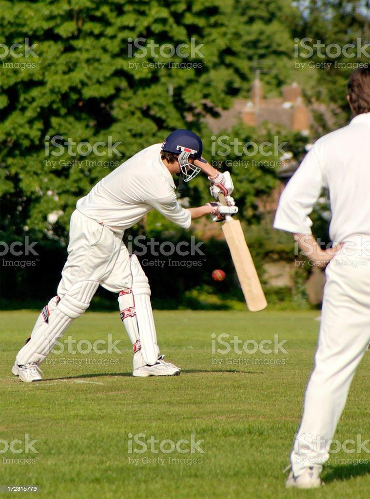 Cricket shot royalty-free stock photo