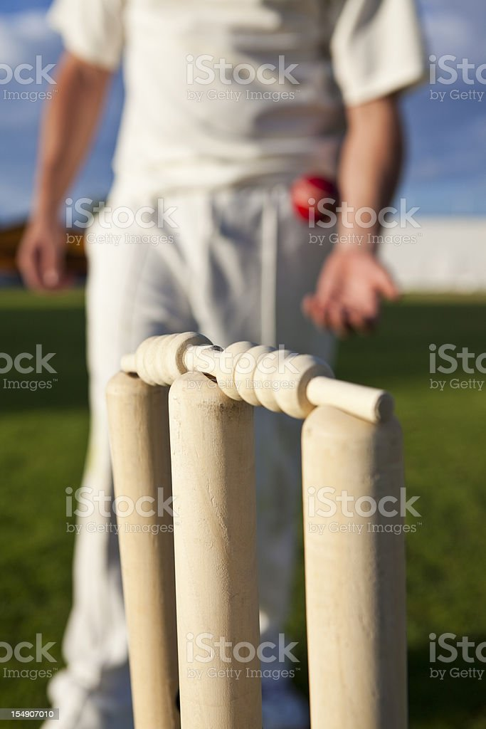 Cricket stumps and player in the background stock photo