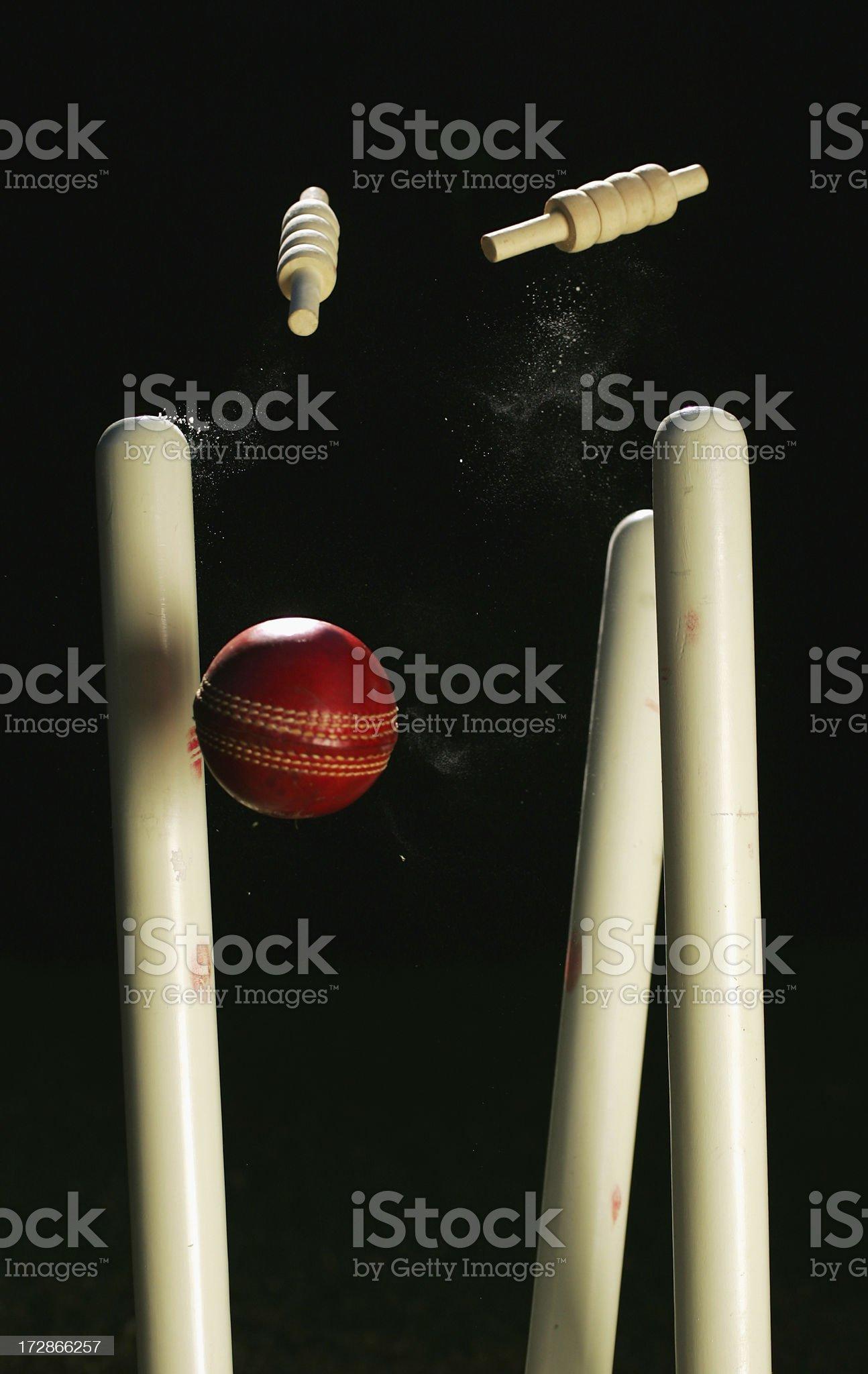 Cricket Stumps royalty-free stock photo