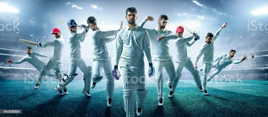 Different cricket roles and positions in one image.