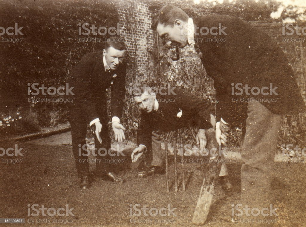 Cricket Vintage Photgraph royalty-free stock photo
