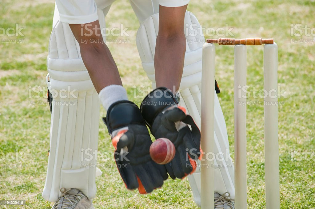 Cricket wicketkeeper catching a ball behind stumps stock photo