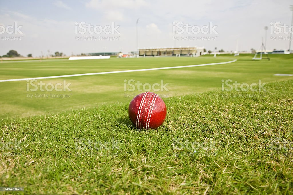 Cricket world cup royalty-free stock photo