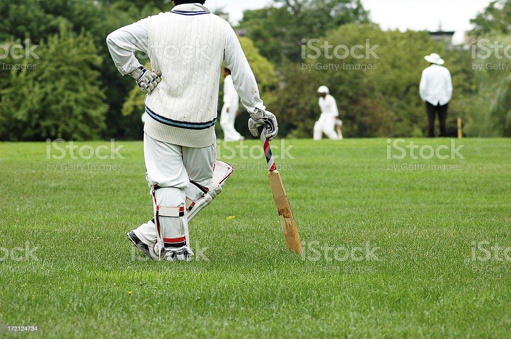 Cricketer stock photo