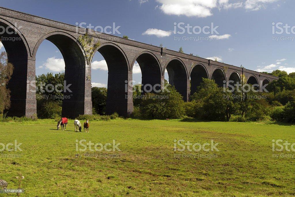 Crigglestone viaduct stock photo