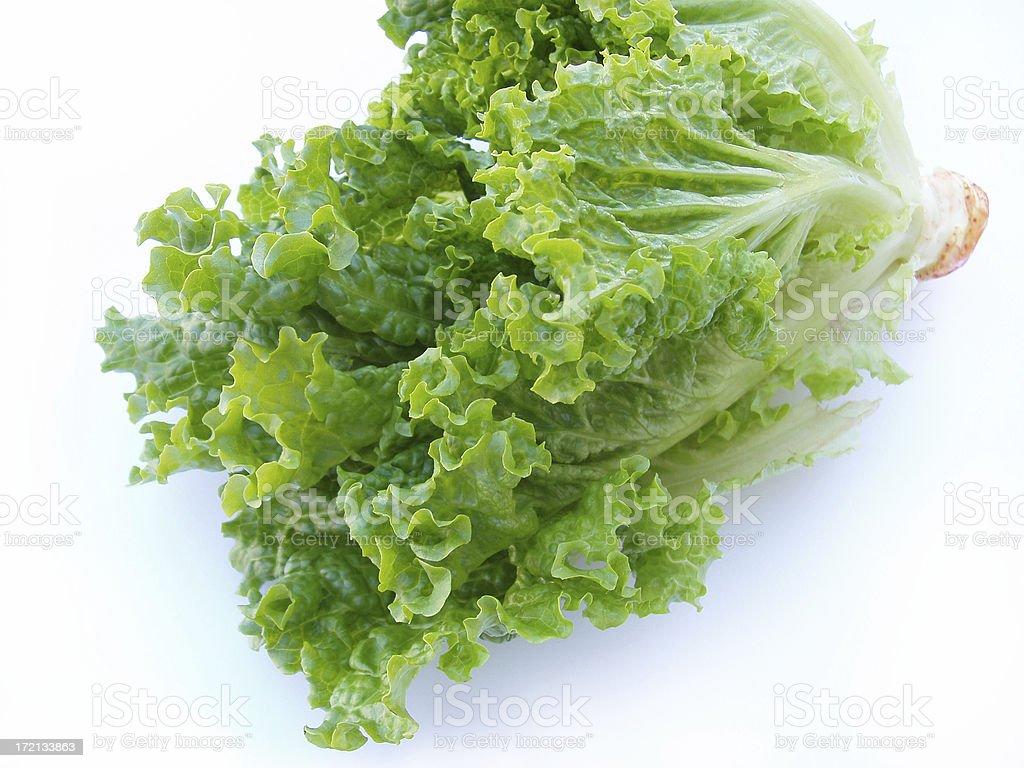 Crisp Lettuce - Romain royalty-free stock photo