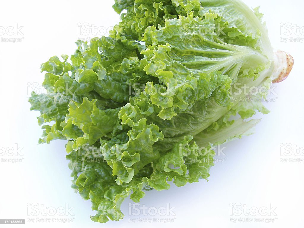 Crisp Lettuce - Romain stock photo
