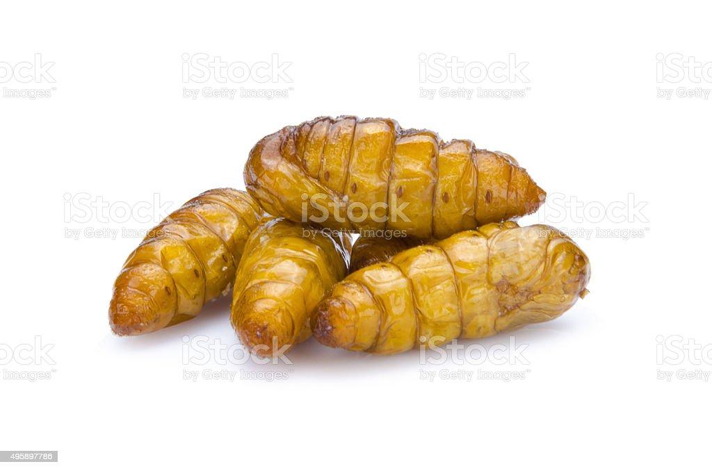 Crispy fried insects amazing menu stock photo