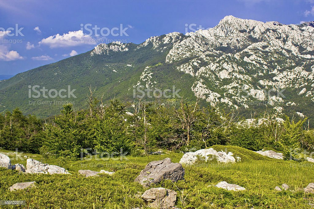 Crnopac peak of Velebit mountain stock photo