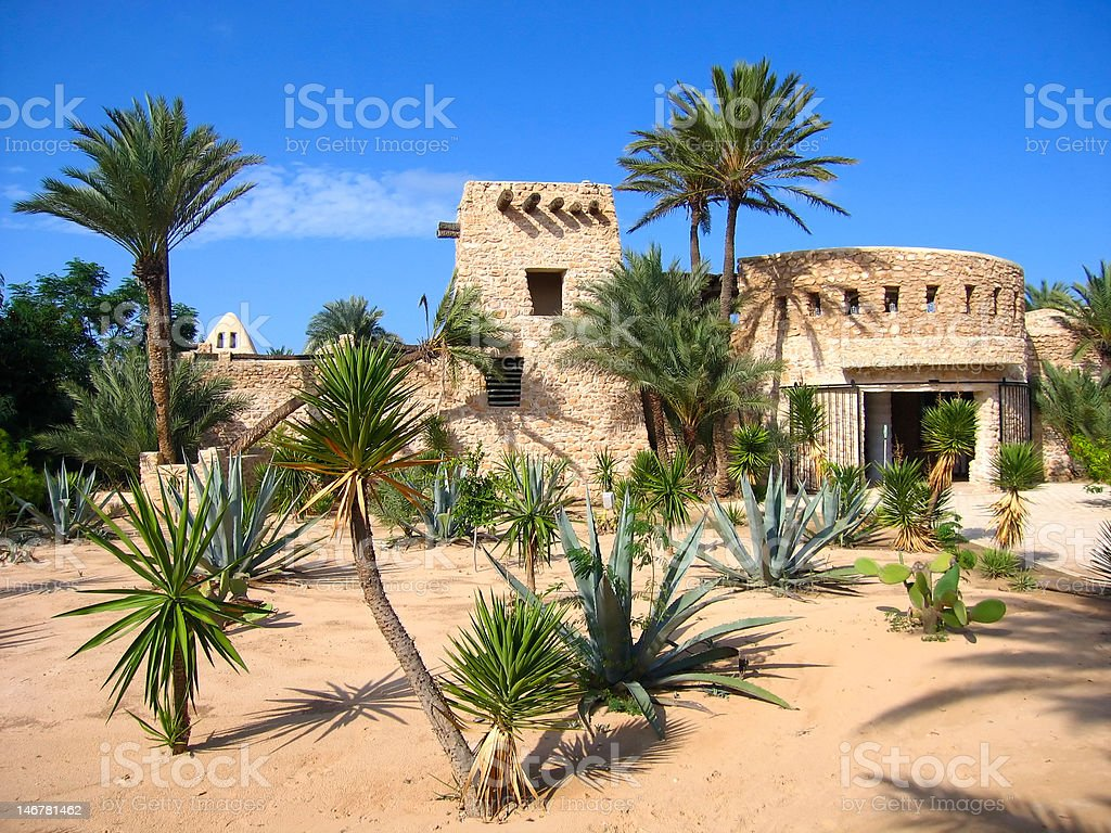 Crocodale farm on Djerba (Tunisia) stock photo