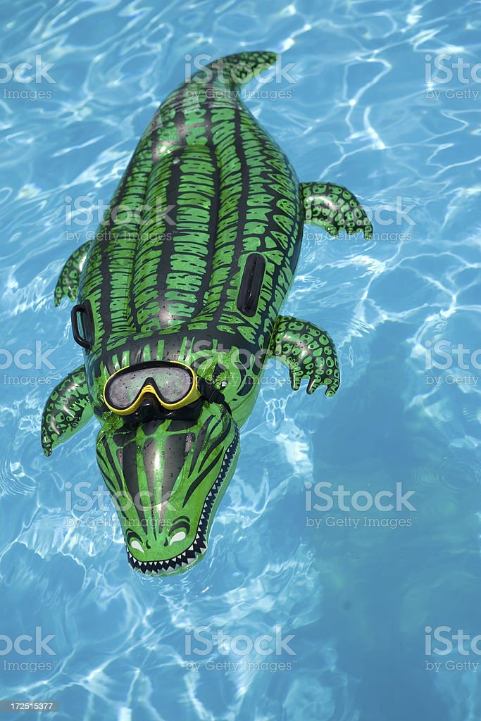 crocodile air bed royalty-free stock photo