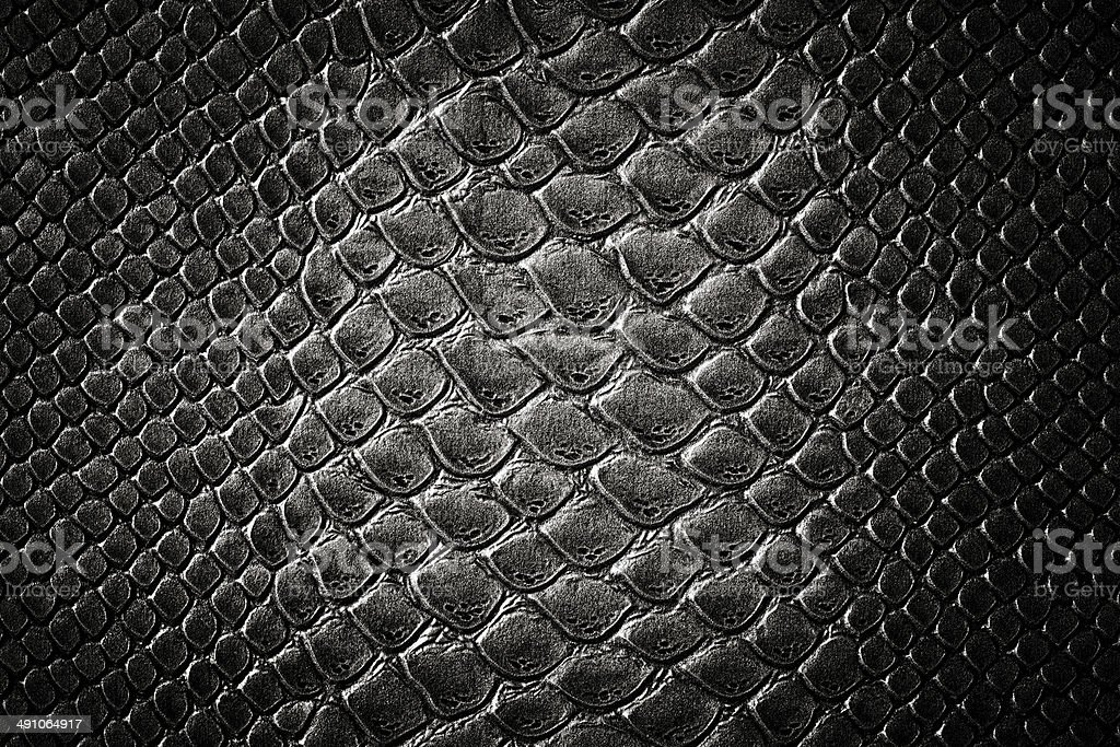 Crocodile black skin  texture stock photo