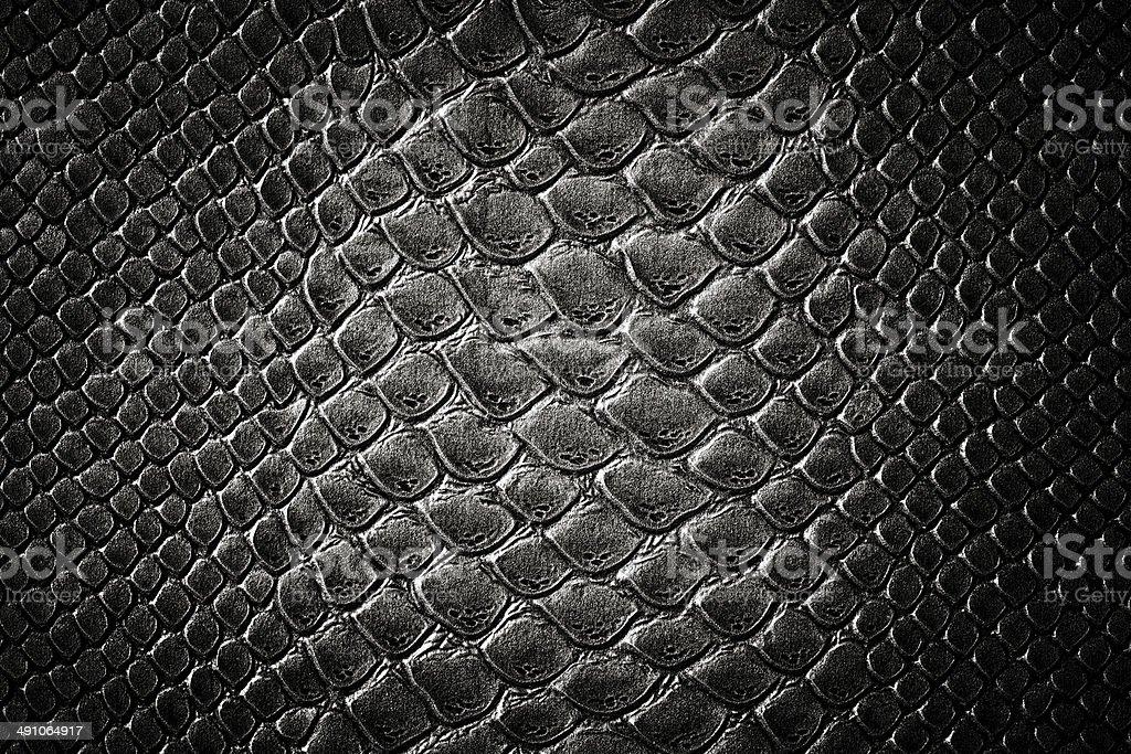 Crocodile black skin  texture stock photo