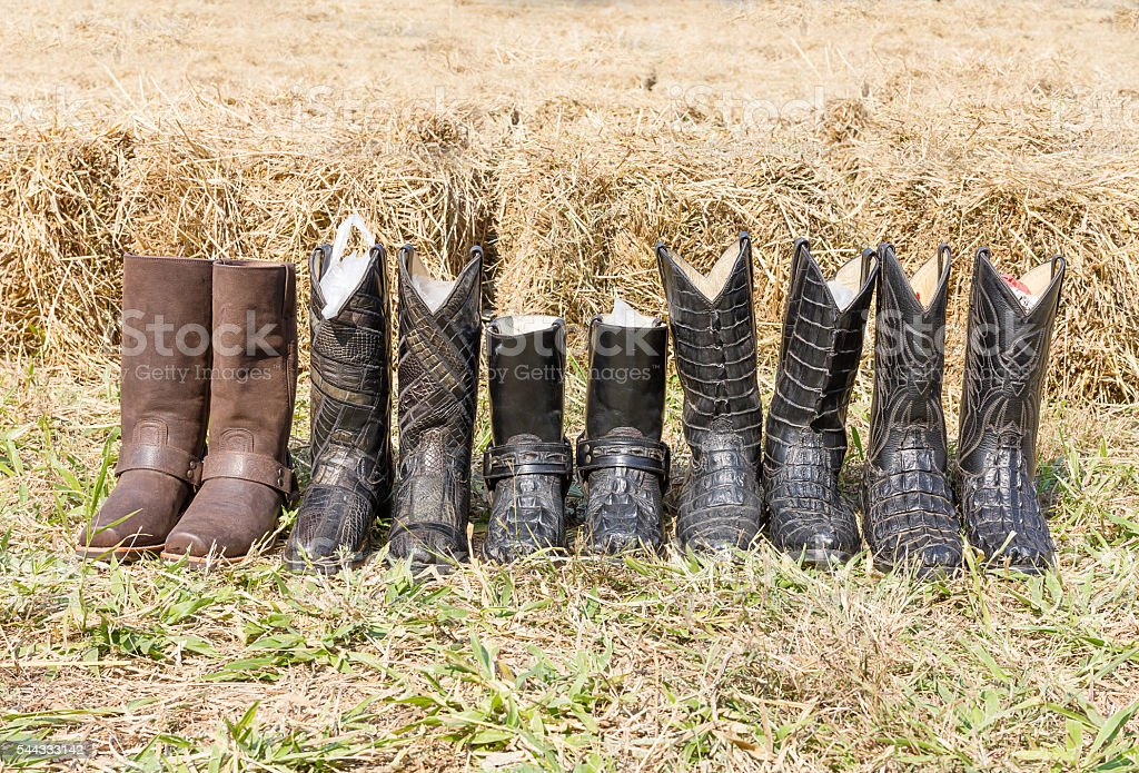 Crocodile cowboy leather boots stock photo