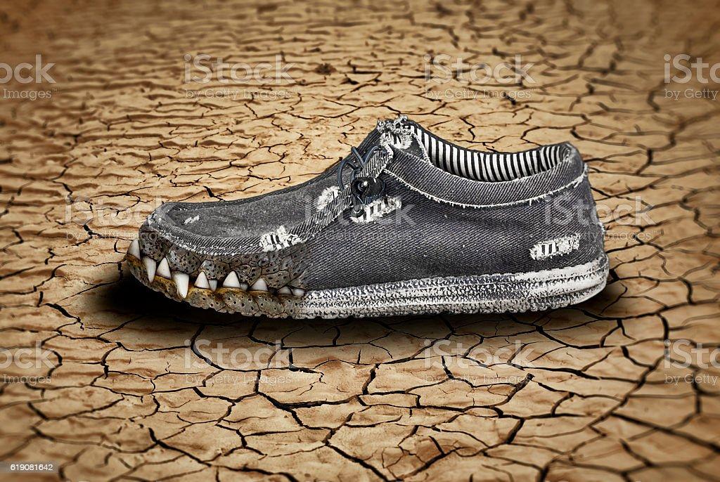 Crocodile shoes stock photo