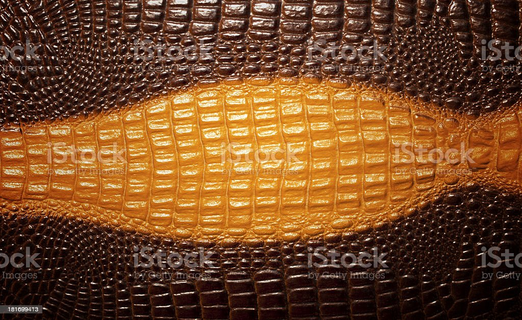 Crocodile skin texture background royalty-free stock photo