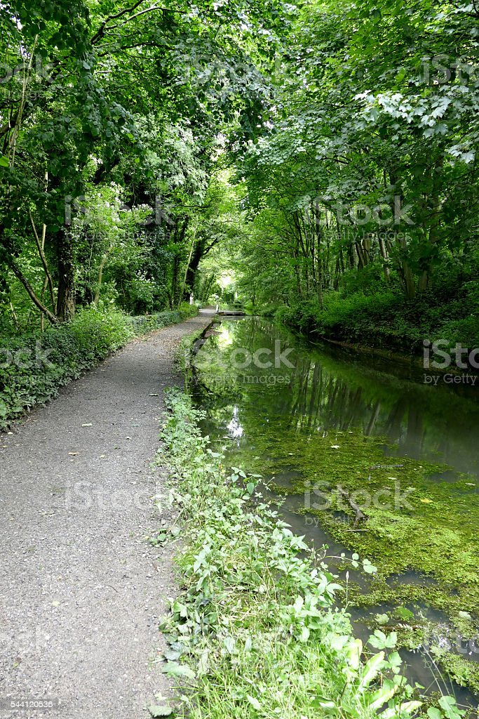Cromford Canal, portrait. stock photo