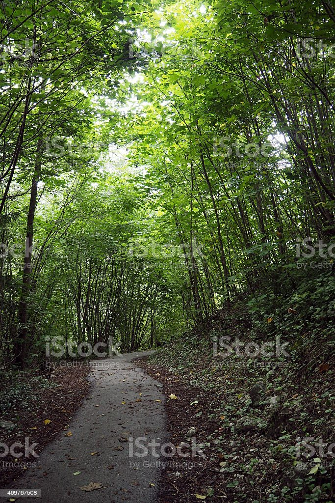 Crooked path stock photo