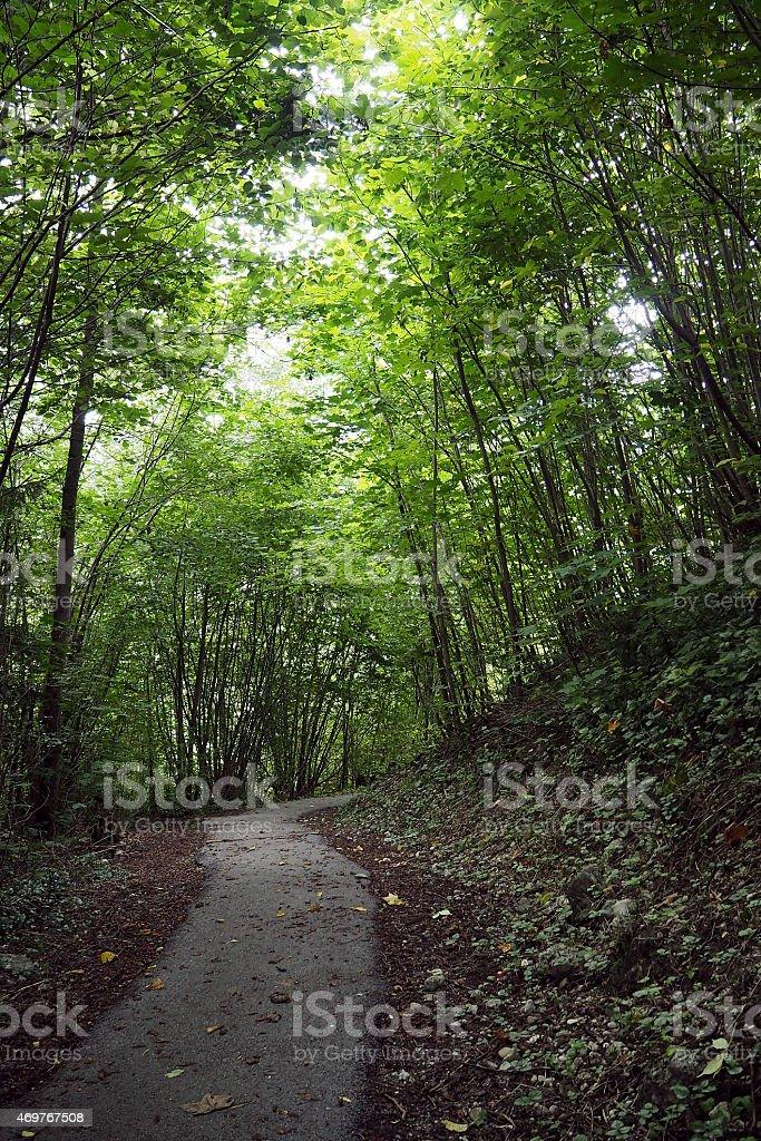 Crooked path stock photo