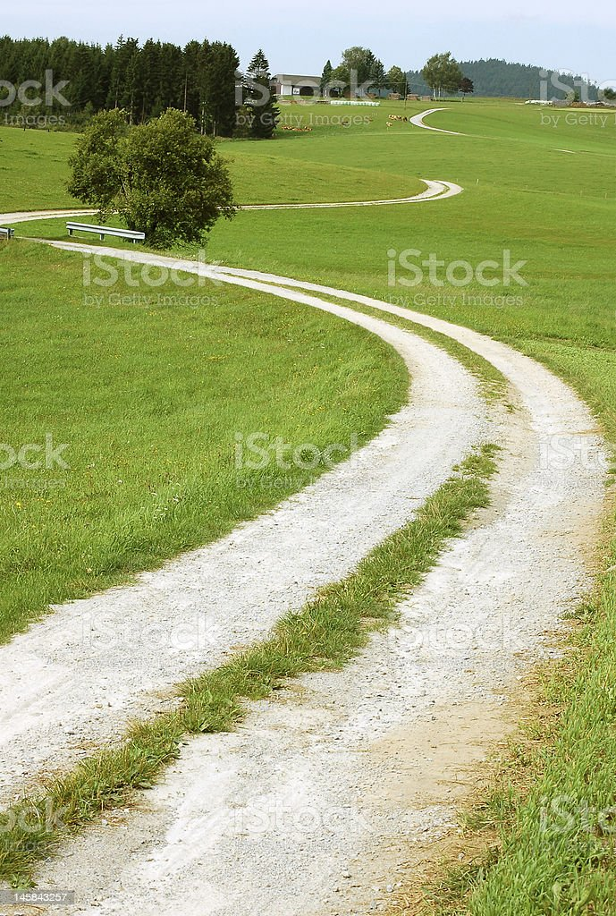 Crooked Rural Road royalty-free stock photo
