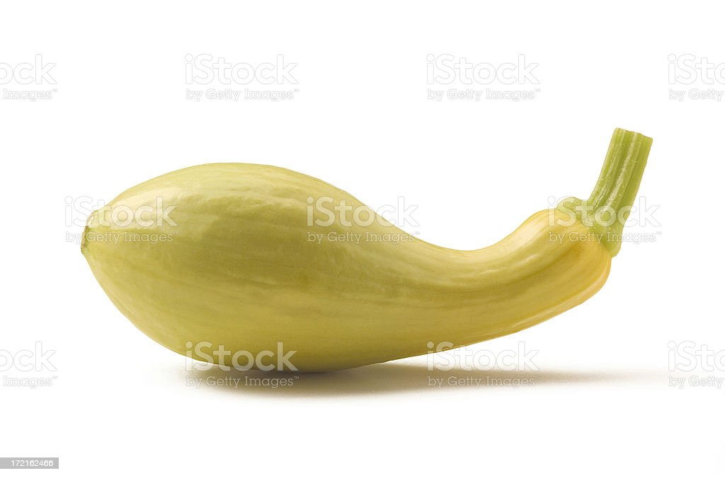 Crookneck Squash with Path royalty-free stock photo