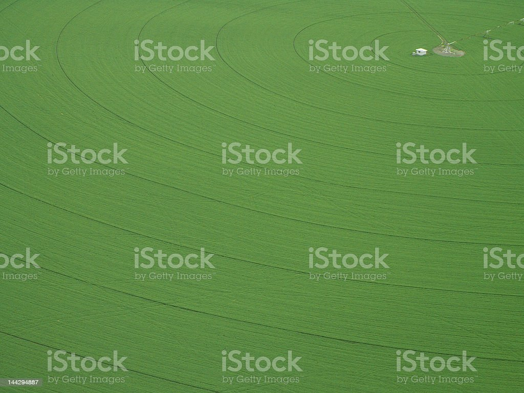 Crop Circles royalty-free stock photo