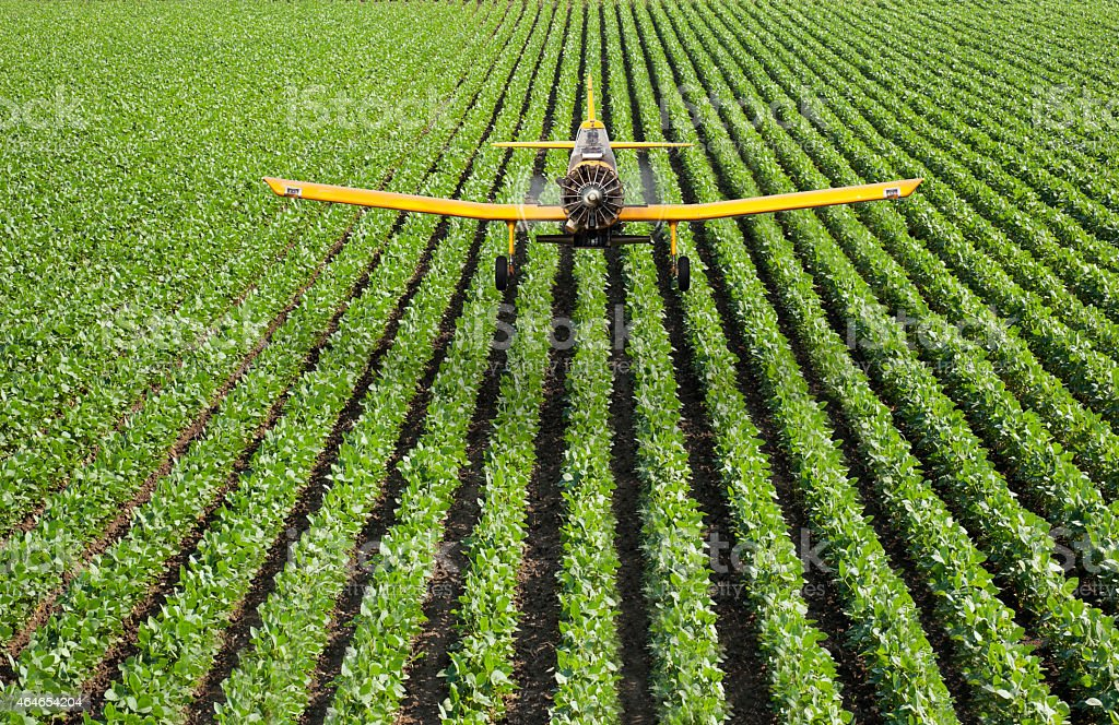 Crop duster airplane spraying rows of crops stock photo