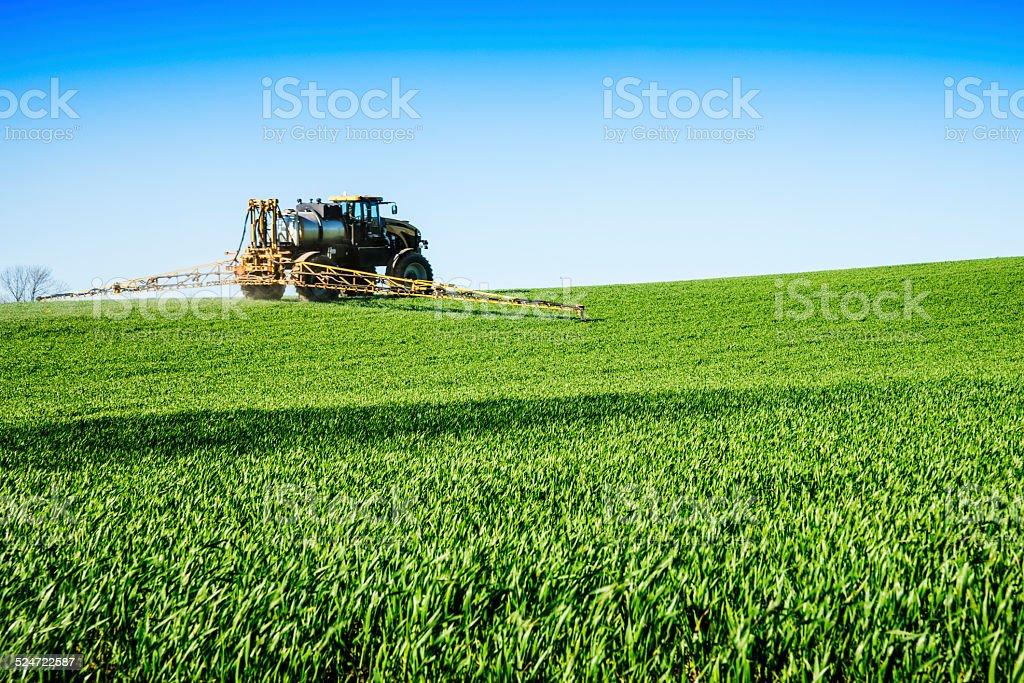 Crop duster spraying early season wheat field stock photo