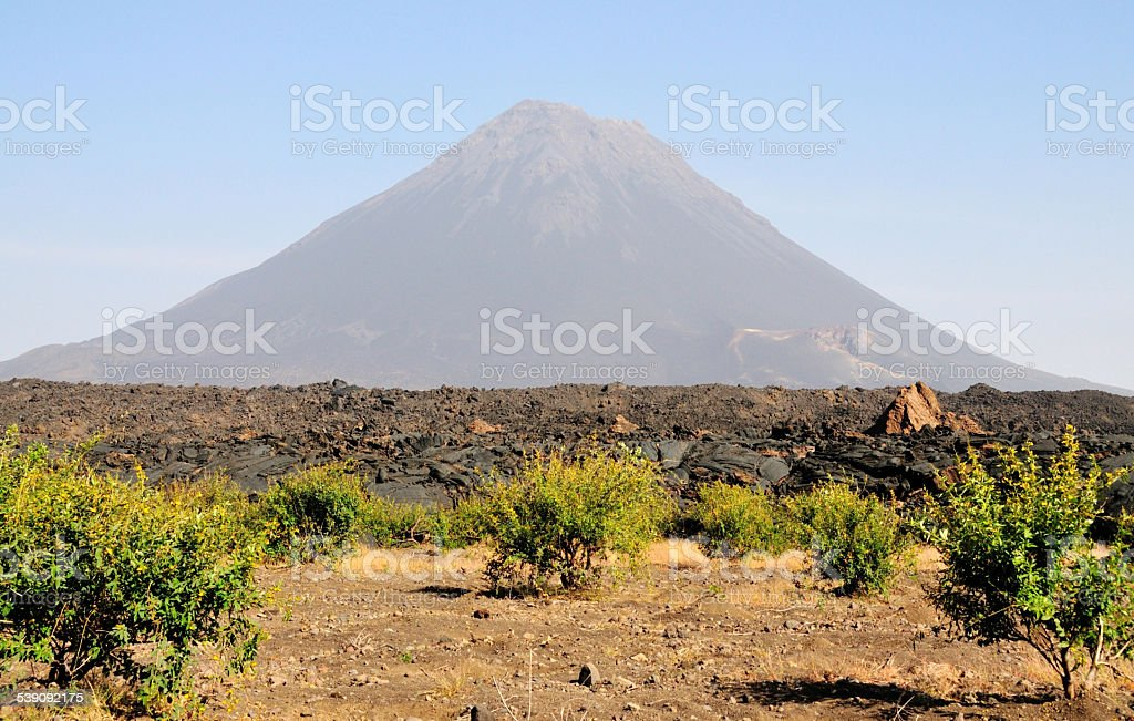 Crop field by the volcano stock photo
