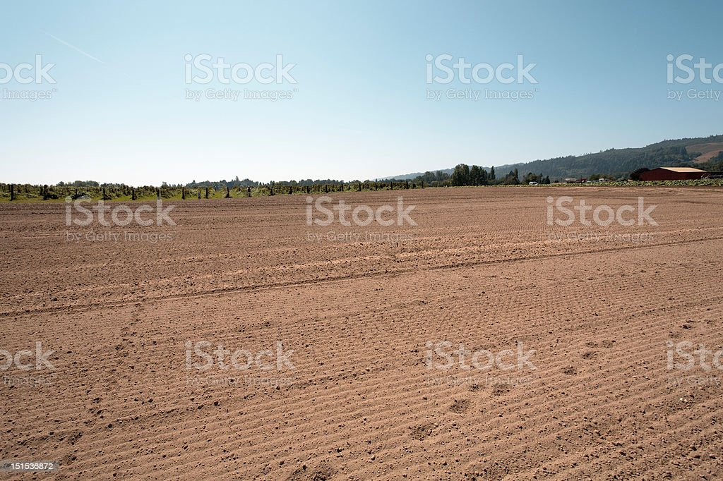 Crop field with tracks and farmstead stock photo