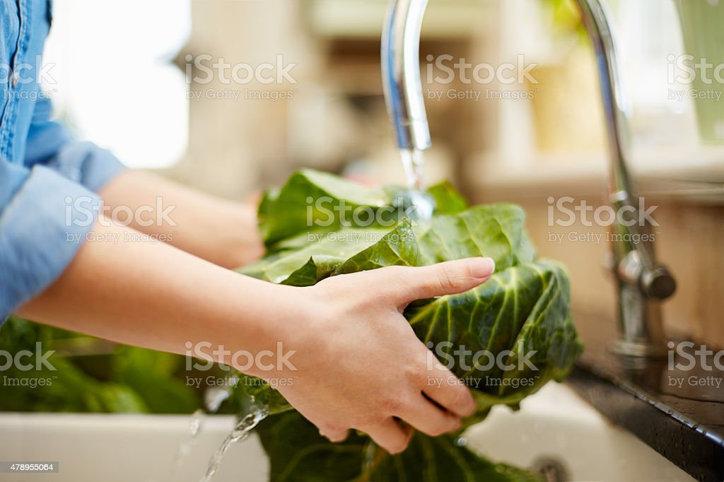 Cropped close-up image of woman washing cabbage in kitchen stock photo