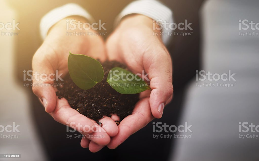 The future of business is in safe hands stock photo