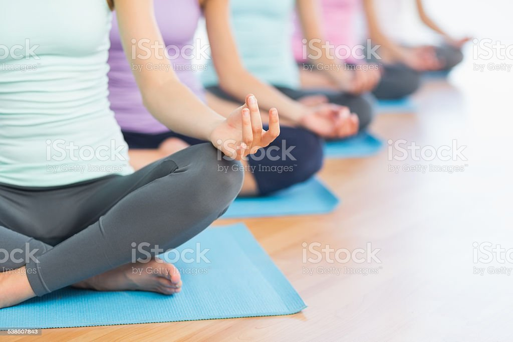 Cropped sporty women in lotus pose at fitness studio stock photo