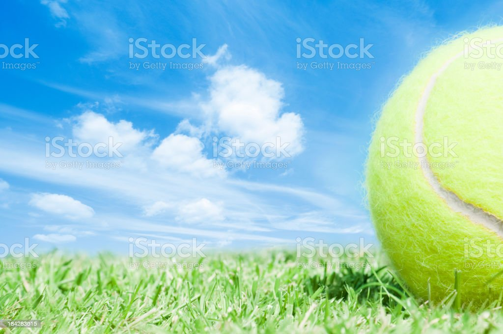 Cropped tennis ball lying on green grass with blue sky royalty-free stock photo