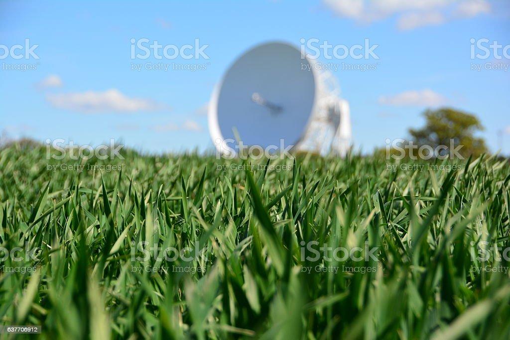 Crops in front of Jodrell Bank telescope stock photo