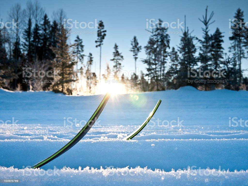 Cross Country Ski stock photo