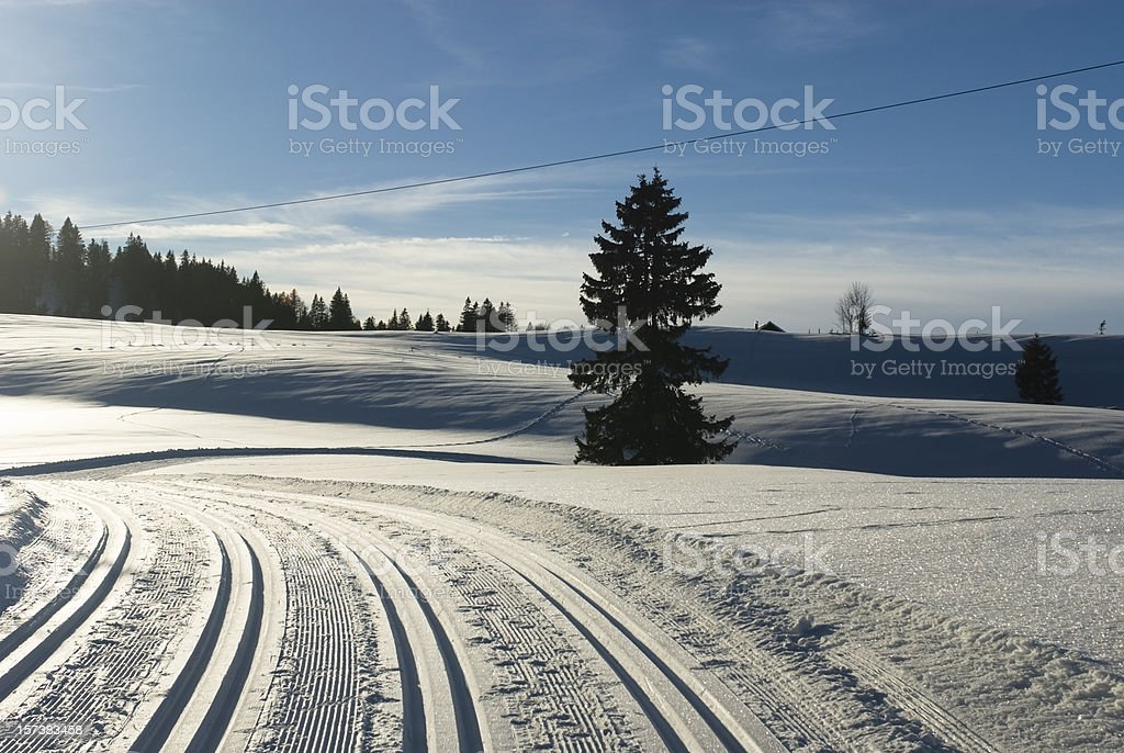 Cross country ski slope at late afternoon royalty-free stock photo